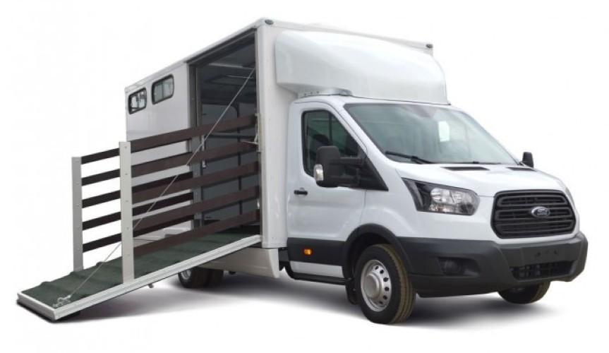 На базе Ford Transit сделали фургон для перевозки лошадей