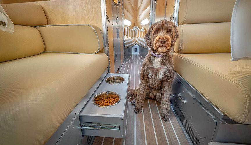 Компания Bowlus разработала кемпер для собак